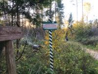 Miejsce Mocy w Białowieży