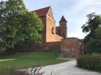 Zamek Kapituły Warmińskiej w Olsztynie z parku
